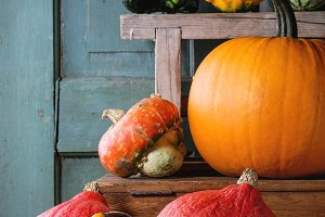 Assortment of different pumpkins