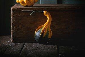 Two decorative pumpkin