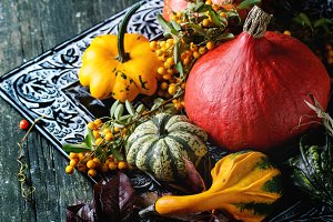Assortment of different pumpkins and