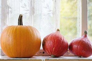 Assortment pumpkins on window sill