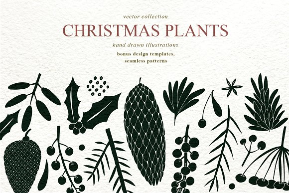 Christmas Plants Vector Collection Custom Designed Illustrations
