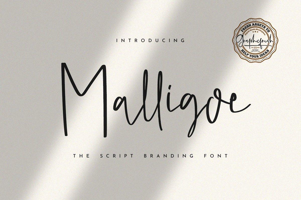Malligoe - The Script Branding Font