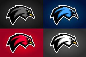 Bird Sports Graphics