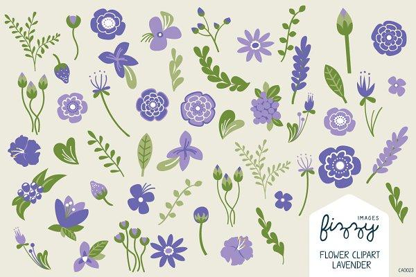 Lavender Floral Illustrated Clipart