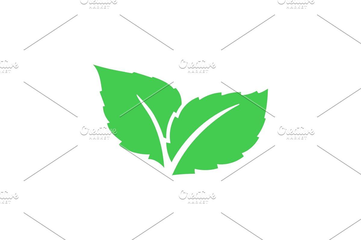 Eco Green Color Leaf Vector Logo