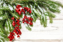 Christmas tree branch red berries