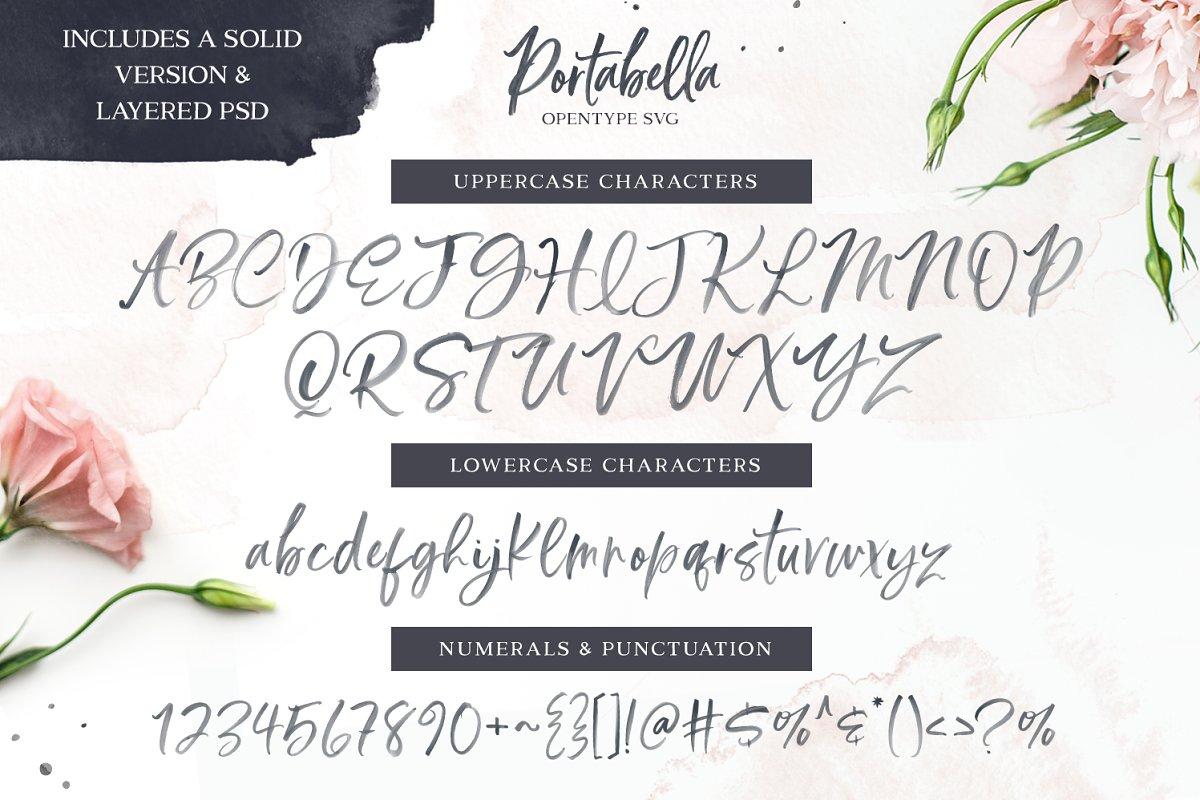 SALE | Delicious Scripts Font Bundle
