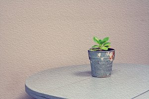 Oil canvas picture:Tiny tree in pot