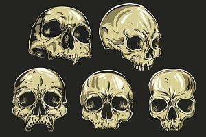 Skulls Vector Set