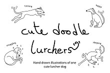 Cute doodle lurcher/greyhound dogs