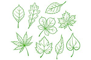 Green leaves silhouettes