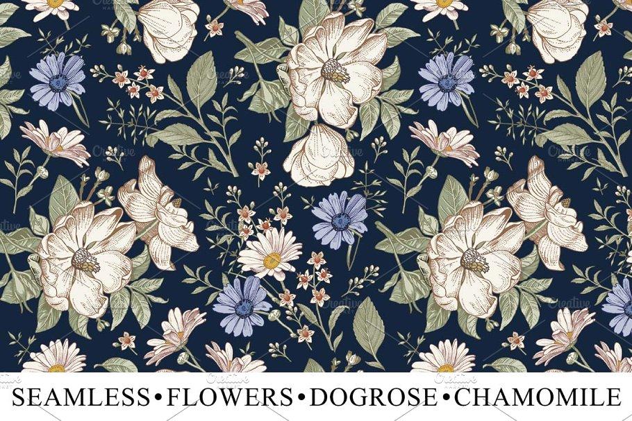 Set Seamless Flowers Dogrose Croton