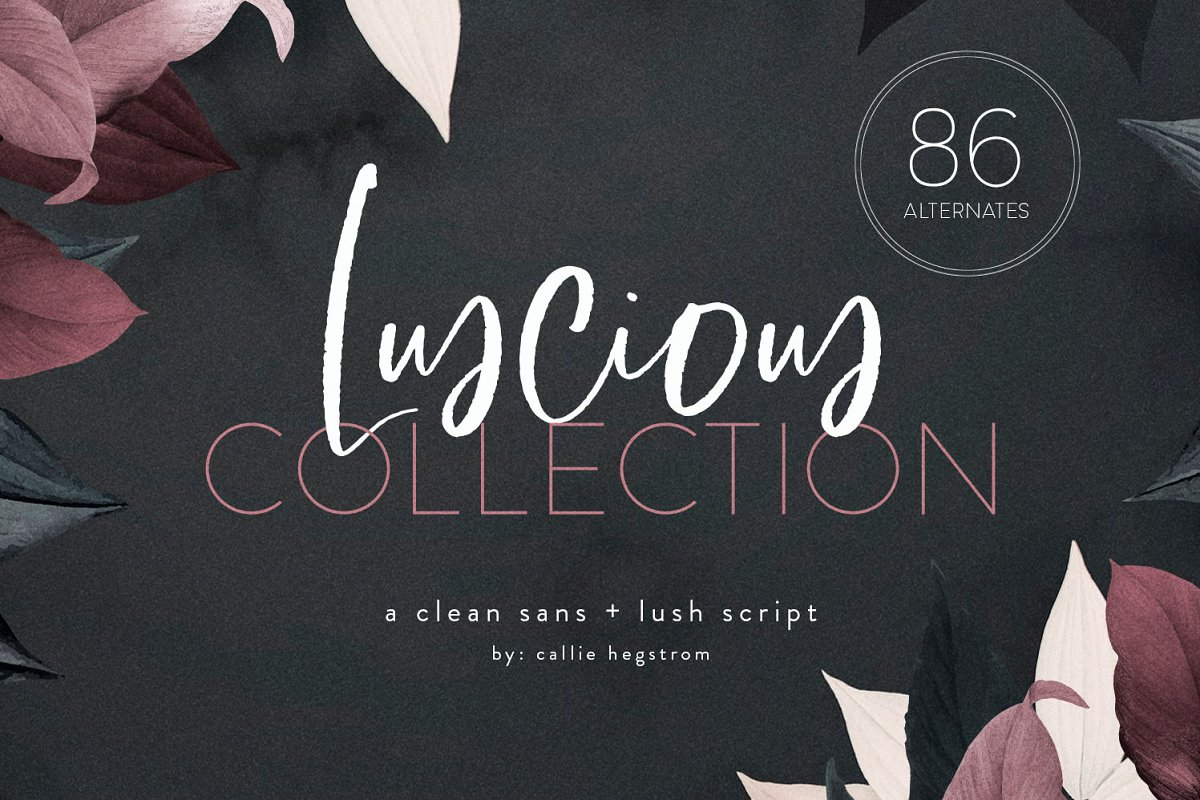 $12 | Luscious Font Collection