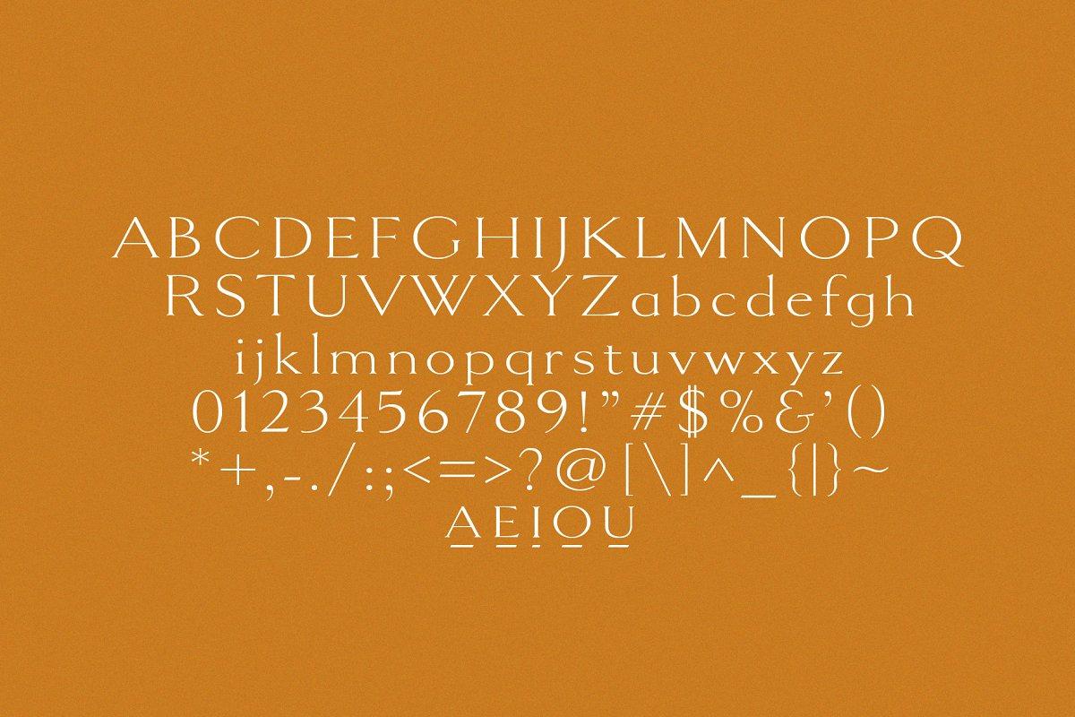 PEACH MEMOIRS | ELEGANT SERIF in Serif Fonts - product preview 3