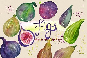 Figs. Watercolor Clip Art.