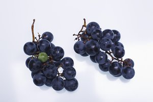 "Black grapes ""Isabella"""