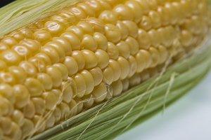 Grains of corn cob. Macro