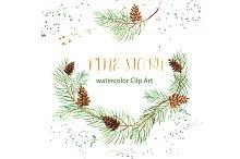 Pine branches. Watercolor Clip Art.