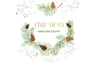 Pine branches. Watercolor Clipart.