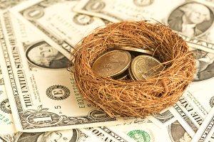 Money with nest