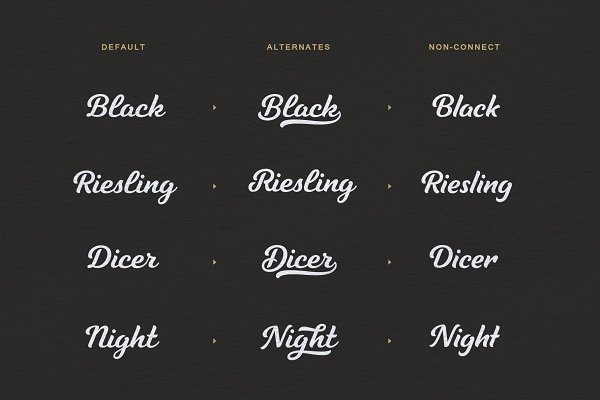 Best Tilda Script — stylish font family Vector