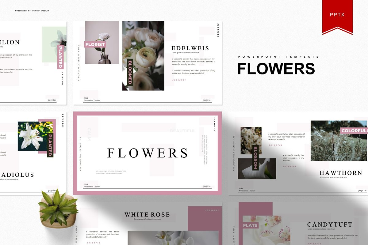 Flowers - Powerpoint Template