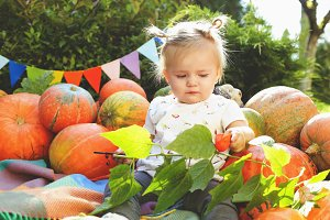 The tiny girl and pumpkins