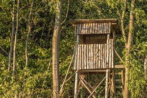 Wood / High seat