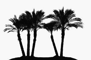 Desert island shilouette