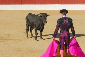 bullfighter in front of the bull