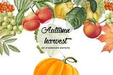 Set of watercolor autumn elements