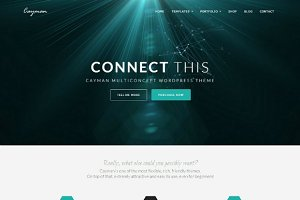 Cayman - WordPress Theme