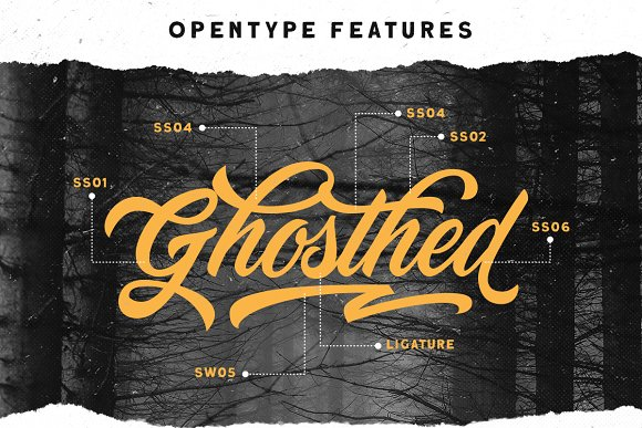Devilion - Hand Lettering Script in Display Fonts - product preview 5