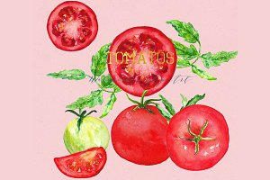 Tomatos. Watercolor Clip art.