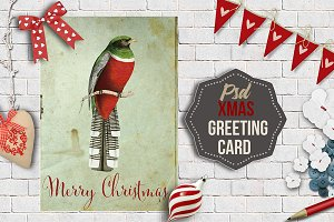 Xmas Greeting Card Nª12