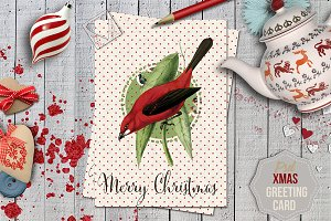 Xmas Greeting Card Nº13