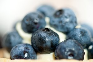 blueberries and cream cupcake pastry 023.jpg