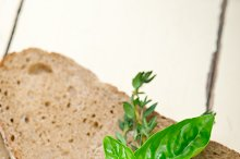 bread basil and thyme 014.jpg