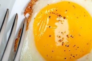 eggs 037.jpg