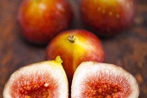 figs 007 (2).jpg