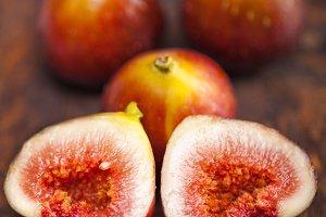 figs 009 (2).jpg