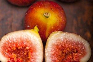 figs 014.jpg
