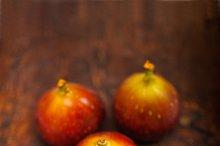 figs 015.jpg
