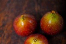 figs 016.jpg