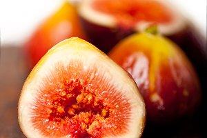 figs 020.jpg