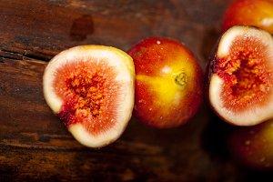 figs 019.jpg