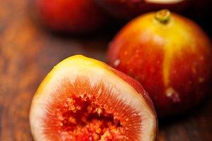 figs 021.jpg