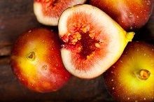 figs 027.jpg