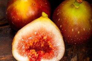 figs 029.jpg
