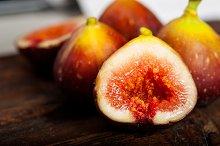 figs 028.jpg